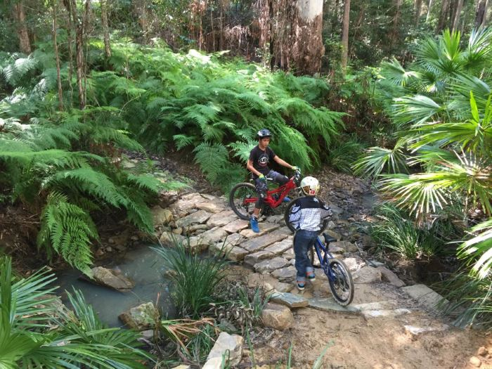 Mountain Biking on the Sunshine Coast